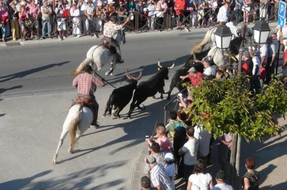 http://chevauxdegardian.cowblog.fr/images/BANDI4.jpg